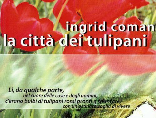 la città dei tulipani